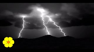 Very Loud Heavy Rainstorm Thunderstorm - Time to Go to Sleep - Lluvia torrencial palo de agua