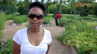Missouri City Community Garden