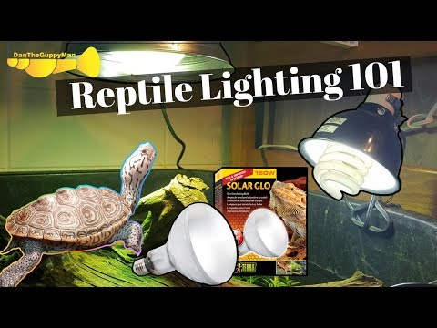 ULTIMATE Turtle/Tortoise Light And Heating Guide