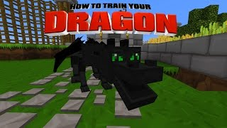Minecraft - HOW TO TRAIN YOUR DRAGON - We Saved Toothless ! [16]