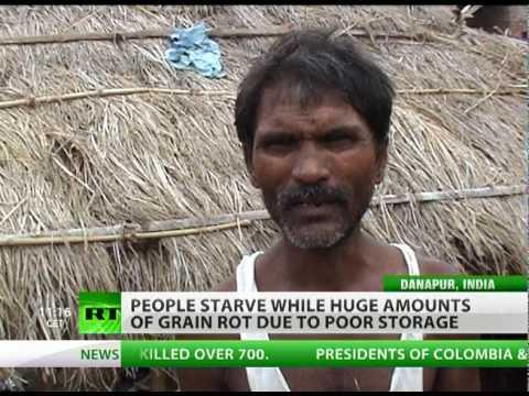 Grain Drain: Food rots as poor starve across India