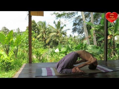 Laghu Vajrasana (little thunderbolt posture)