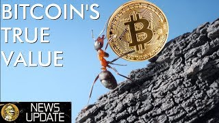 Bitcoin's True Value, Fake Crypto Exchange Volume, & Massive Adoption News