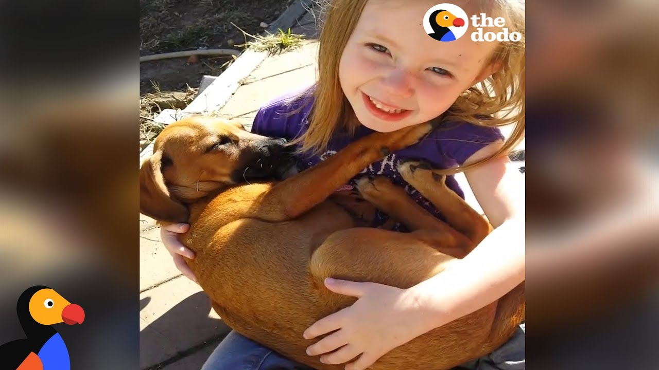 Girl Sings Lullaby to Puppy Her Family Just Adopted