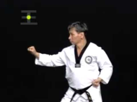 Taeguk Yook Jang
