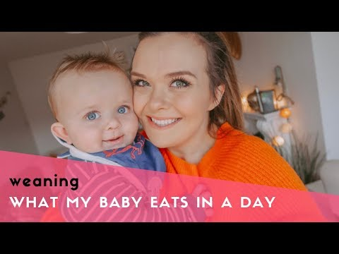 WHAT MY BABY EATS IN A DAY - BABY-LED WEANING