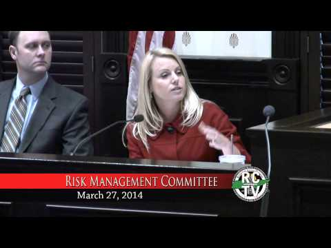 Risk Management Committee - March 27, 2014