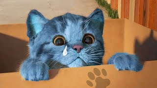 Play Little Kitten My Favorite Cat Pet Care Game - Fun Baby Kitten Animation Games For Children
