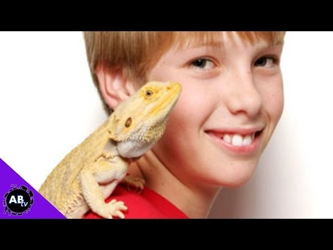 What Reptile Pet Is Best For You?! 5 Weird Animal Facts