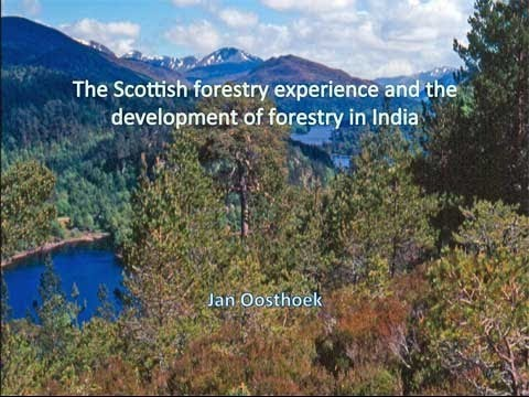 The Scottish forestry experience and the development of forestry in India