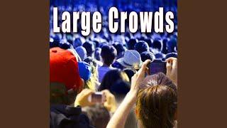 Large Arena Concert Crowd Cheering & Applauding
