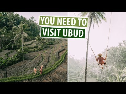 Best Things To Do In Ubud, Bali | Rice Terraces, Bali Swing, Aling Aling Falls
