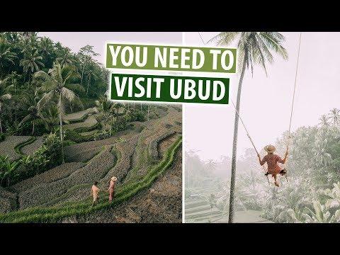 Best Things To Do In Ubud, Bali | Rice Terraces, Bali Swing, Aling Aling Falls