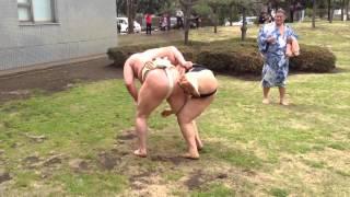 2013.04.06 藤沢巡業会場外の芝生で付け人たちと戯れる横綱白鵬。