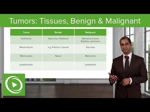 Types Of Cancerous Tumors