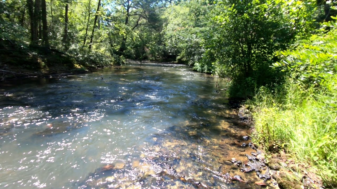 A Beautiful Georgia Creek (Bonus Video)