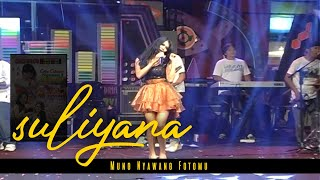 Gambar cover Nyawang Fotomu - Suliyana ( Official Music Video )