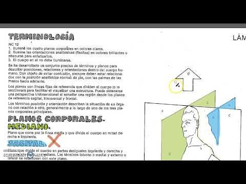 Colorear parte 2 - YouTube