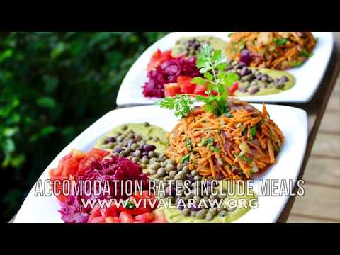 Tropical Food Forest & Natural Building Tour w  Raw Vegan Chef Costa Rica