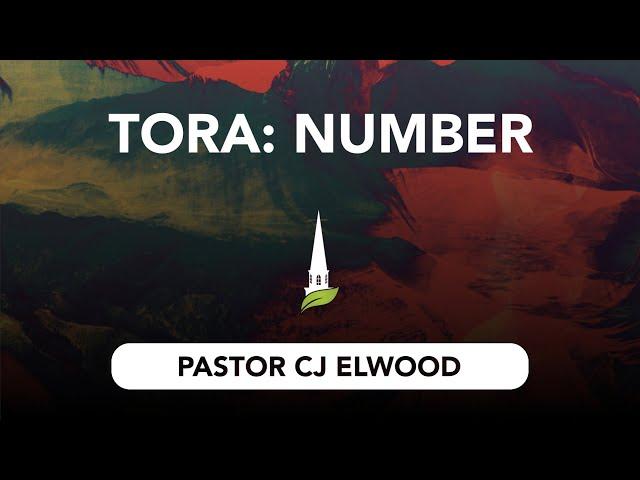 Torah - Numbers