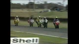 1995 Australian 250cc Grand Prix Championship - Rd 5 Mallala Race 1