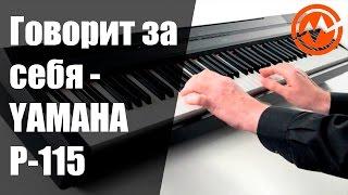 Цифровое пианино YAMAHA P-115 - Когда инструмент говорит сам за себя!(, 2016-11-03T11:37:14.000Z)
