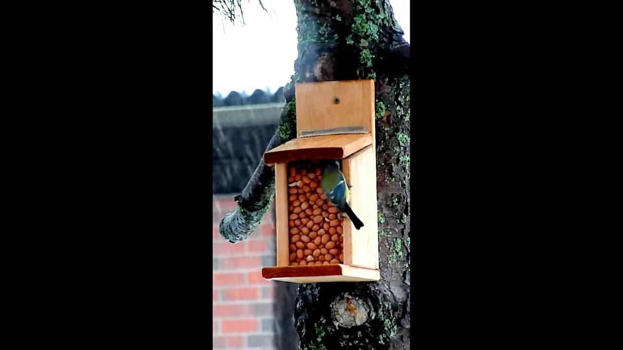 Oravan Ruokinta-Automaatti
