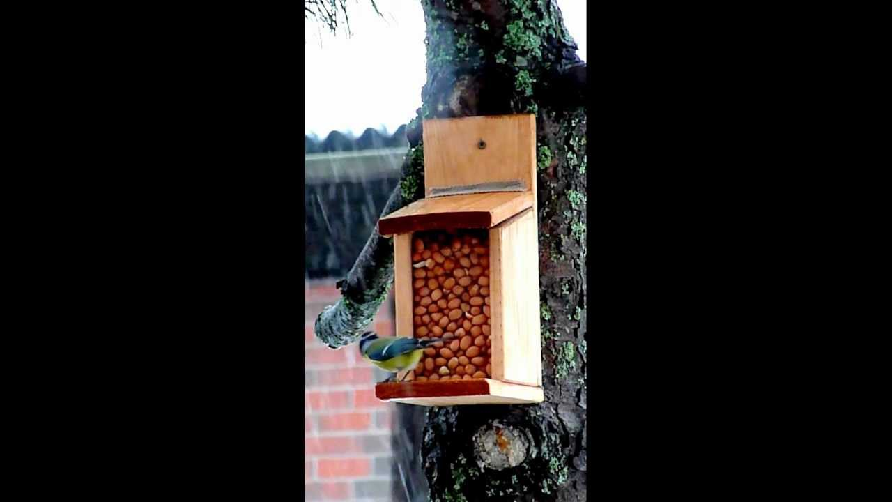 Oravan Ruokinta