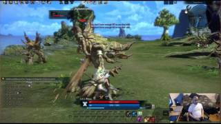 TERA: PC game play