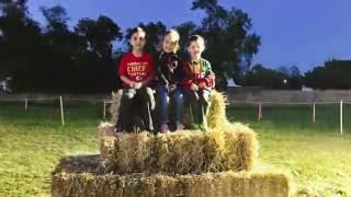 C-vlog #42  Corn Maze
