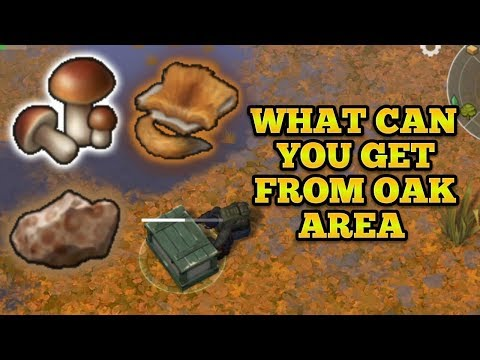 WHAT CAN YOU GET FROM OAK AREA + HOW TO FARM OAK AREAS | LAST DAY ON EARTH : SURVIVAL