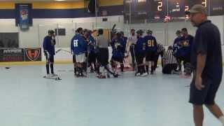 Ball Hockey Fights - Ball Hockey Brawls - Tricity Seekers Vs. Nwo (ufc + Wwe Version - Raw)