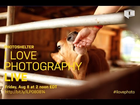 Who Owns a Monkey Selfie? | I Love Photography | Ep 27 | Aug 8, 2014