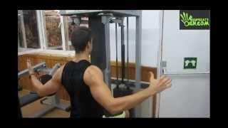 48- GYM Retracción escapular con rotación externa de hombros