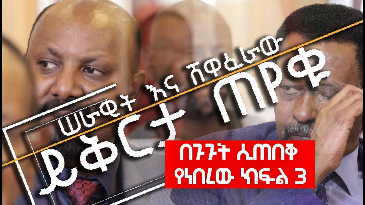Serawit and artist Shewaferaw desalegn apologized to Ethiopian people