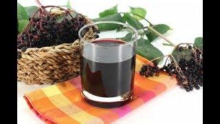 Вино из черноплодки — самые лучшие рецепты в домашних условиях