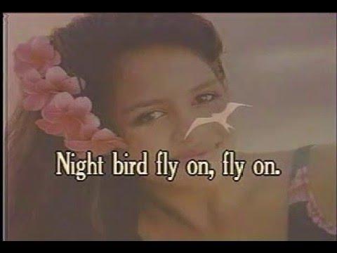 Hawaiian Karaoke - Night Bird