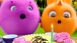 Sunny Bunnies | The Birthday Party | COMPILATION | Cartoons for Children