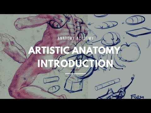 Get Started with Artistic Anatomy