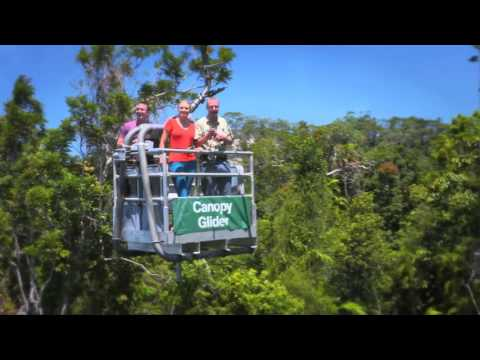 Skyrail Rainforest Cableway Canopy Glider Experience & Vacuum Forming Glider Canopy - TravelerBase - Traveling Tips ...