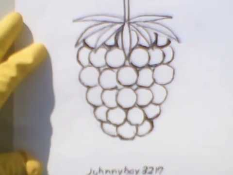 How to draw a raspberry with a pencil