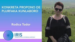 Konkreta propono de plurfaka kunlaboro – Rodica Todor – IRIS
