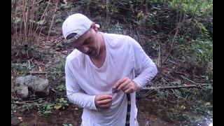 Extrayendo veneno letal de una serpiente