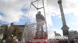 Startling surprise in this Trafalgar Square installation. Everyman Remembered poppy shower.