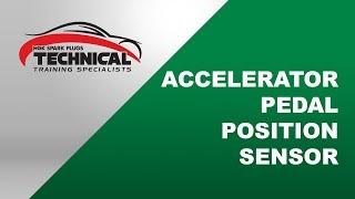 NTK - Accelerator Pedal Position Sensor (APPS)