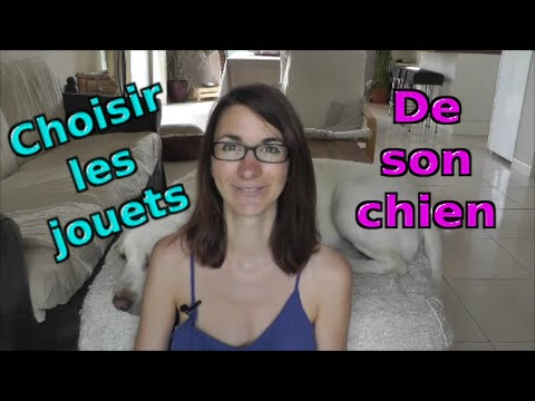 tuto comment choisir les jouets de son chien youtube. Black Bedroom Furniture Sets. Home Design Ideas