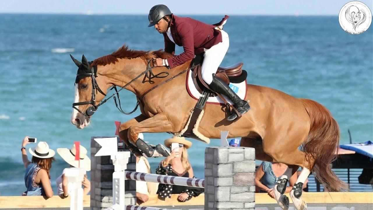 Top 10 Os Cavalos Mais Caros Do Hipismo Youtube