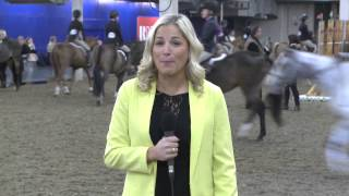 $50,000 Hunter Spectacular Nations Cup at the Royal Horse Show