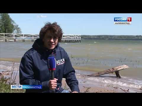 «Балтийский Артек» планирует провести свои смены на Виштынце