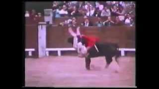 Morrissey - The Bullfighter Dies (Unofficial Video)